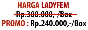 harga ladyfem