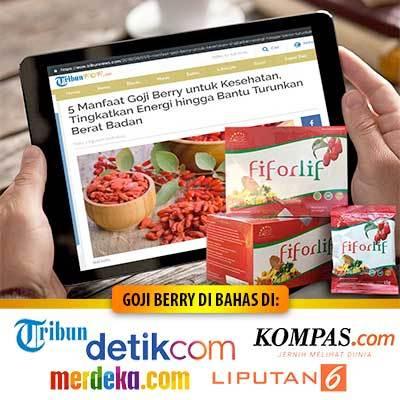 Fiforlif Tribun News